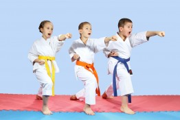 Children's Karate Class
